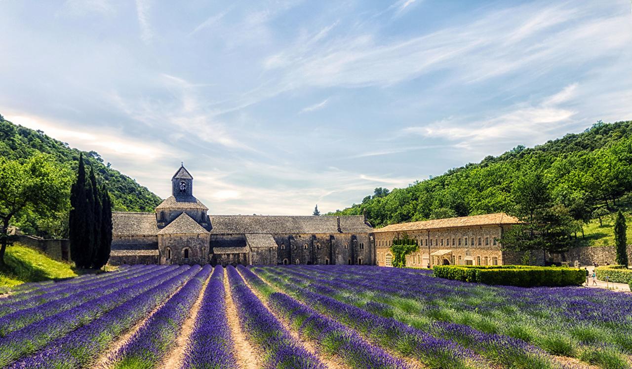 Photo Provence France HDRI Nature Sky Fields lavender 1280x748