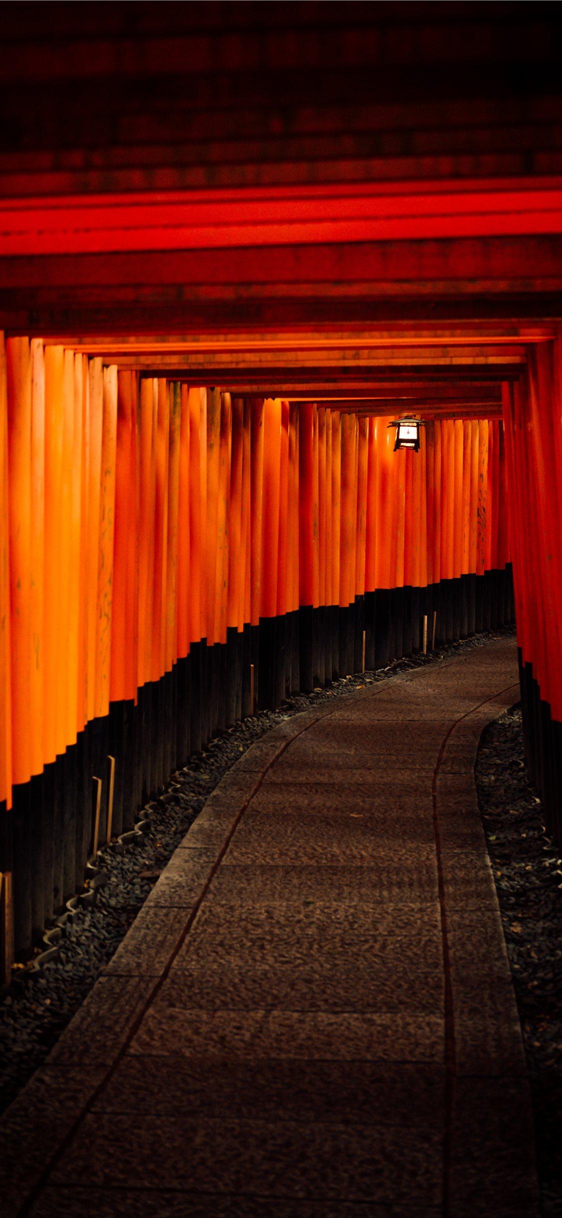 Fushimi inari taisha kyoto japan iPhone X Wallpaper Download 1125x2436