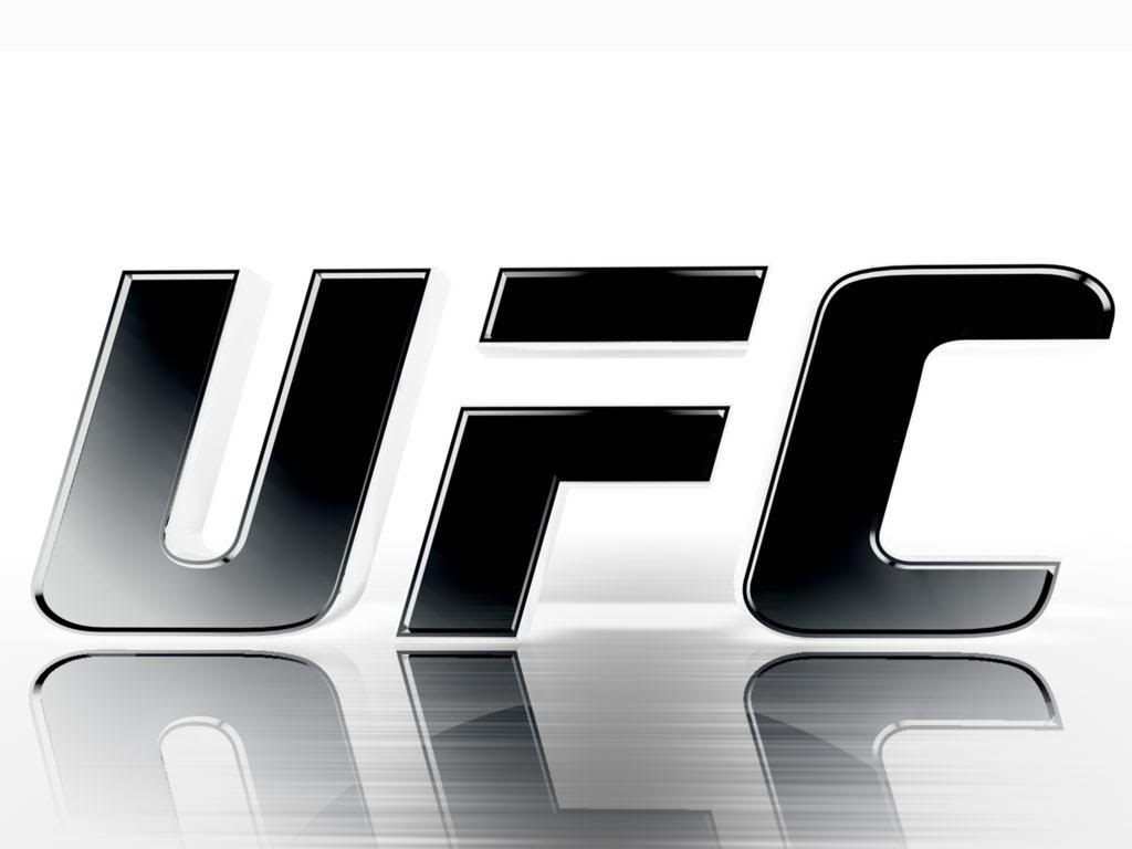 Gorgeous UFC Wallpaper Full HD Pictures 1024x768