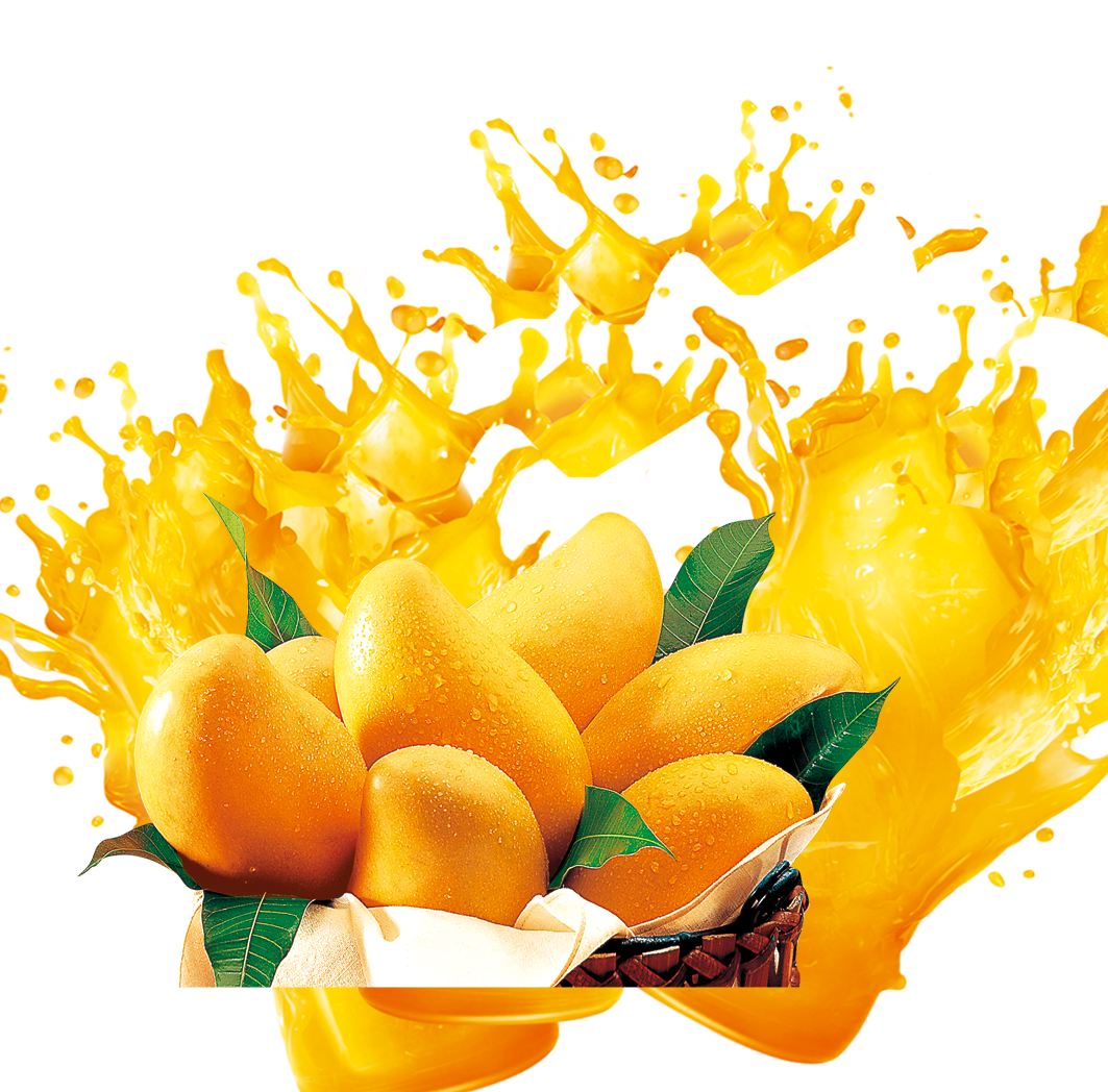 Mango PNG Images Transparent Download PNGMartcom 1063x1048