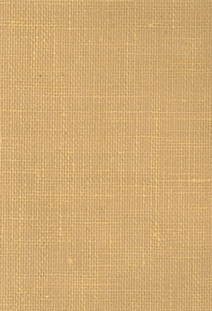 Wallpaper   houston   by American Blinds Wallpaper and More 436x640