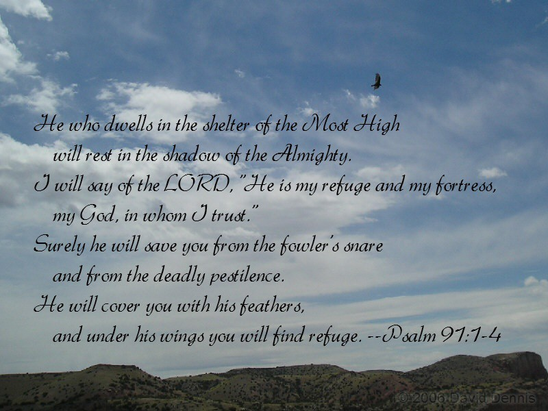 psalms 91 wallpaper image search results 800x600