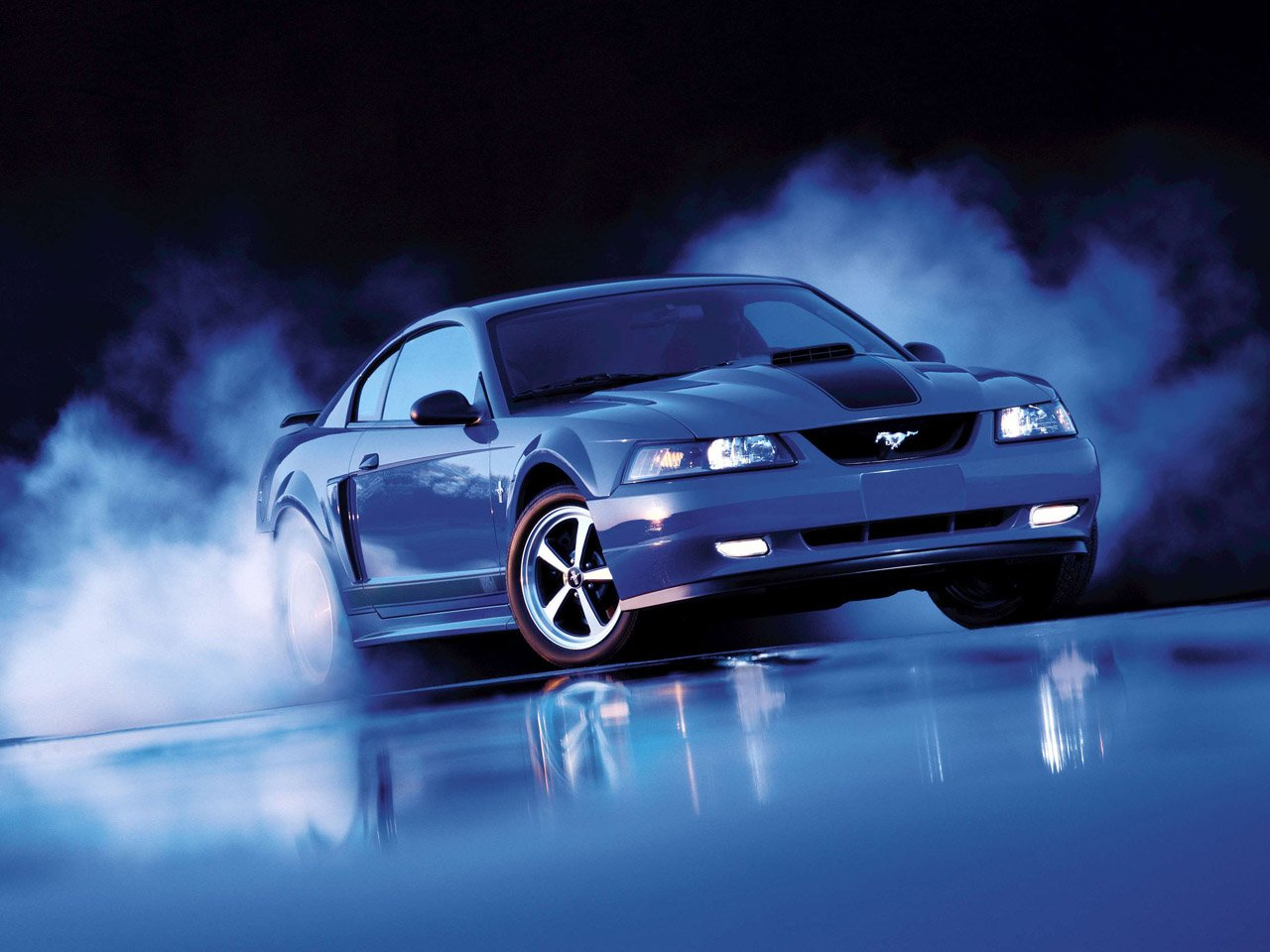 Ford Mustang Cobra Wallpapers Beautiful Cool Cars Wallpapers 1280x960