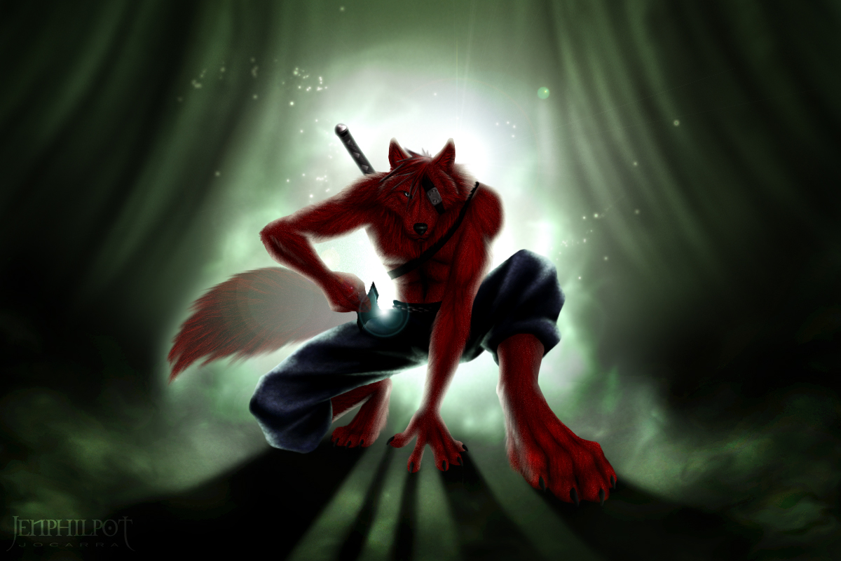 download Furry Fandom Wolves Foxes Anthropomorphic Anthro Fox 1200x800