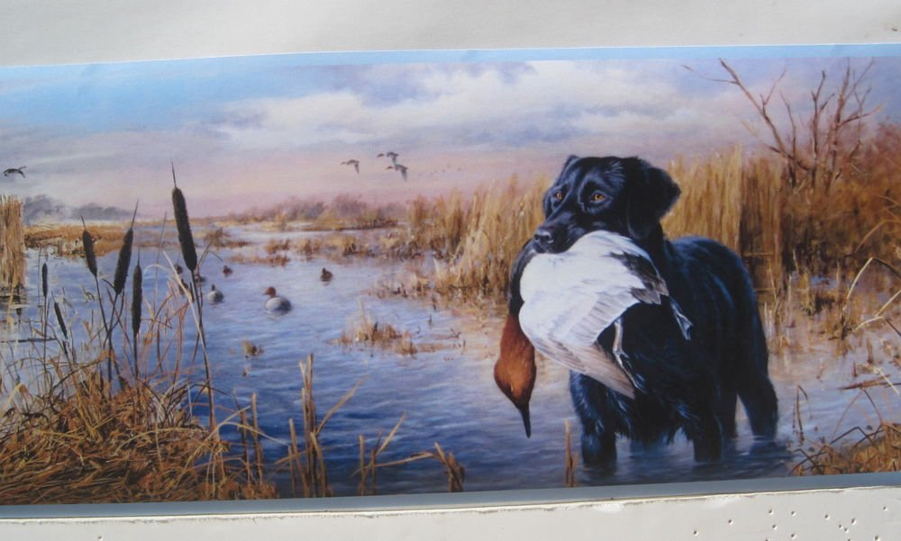 Labrador Retriever Dogs Duck Hunting Wallpaper Border 6 eBay 1000x601
