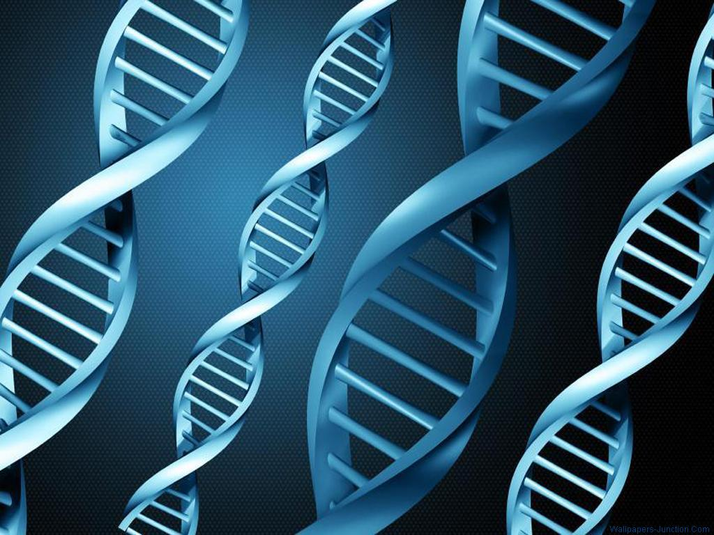 DNA Wallpapers 1024x768