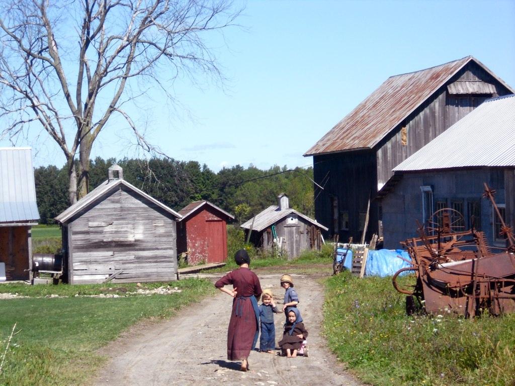 FileAmish farm morristown new yorkjpg   Wikimedia Commons 1024x768