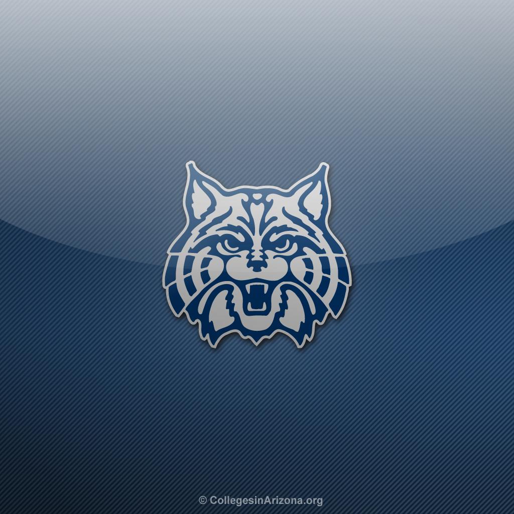 Arizona Wildcats Desktop Wallpaper 1024x1024