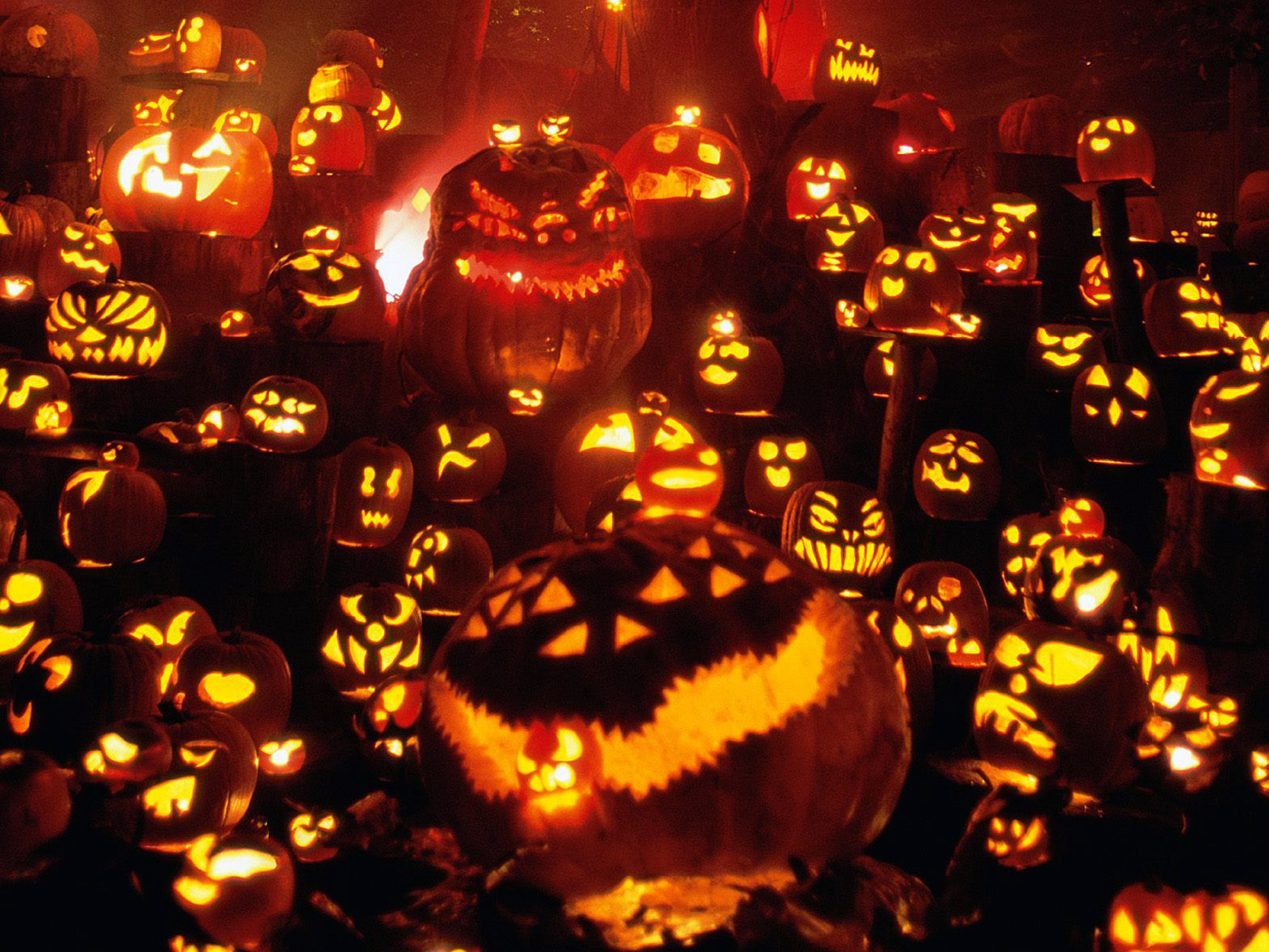 Halloween HD Wallpapers 1600x1200