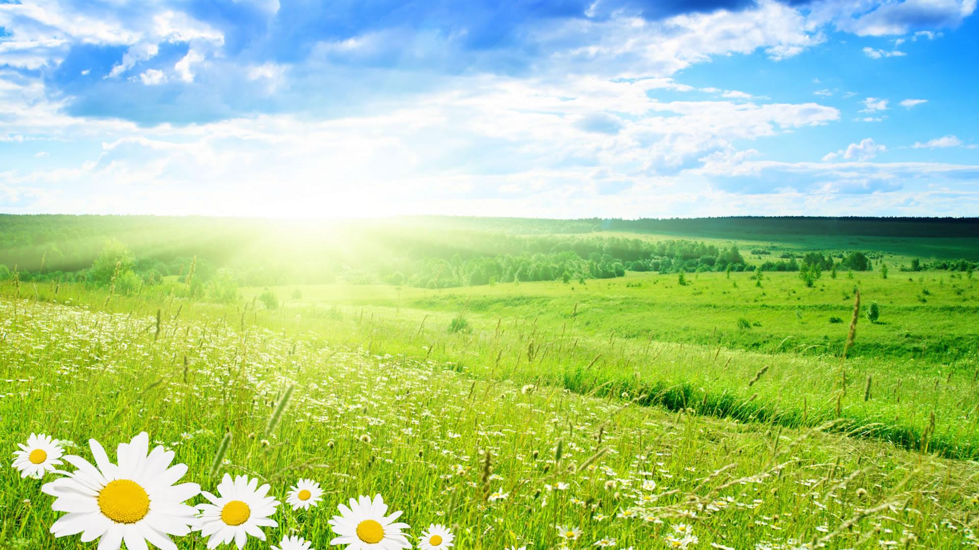 [46+] Beautiful Spring Nature Desktop Wallpaper on ...