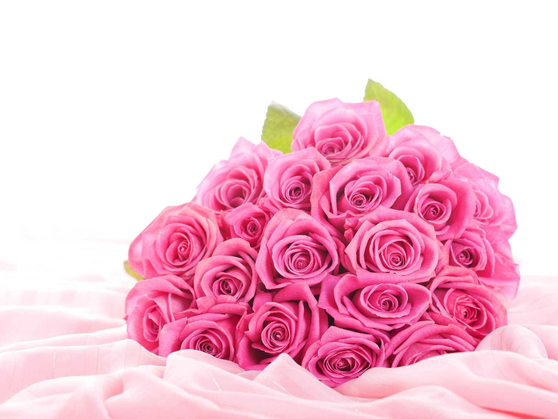 Pink Roses Desktop Backgrounds   Wallpaper High Definition High 1920x1440