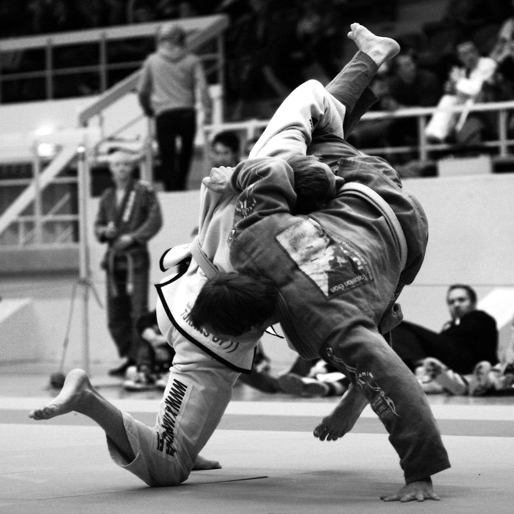 Brazilian Jiu Jitsu Judo 1024x1024