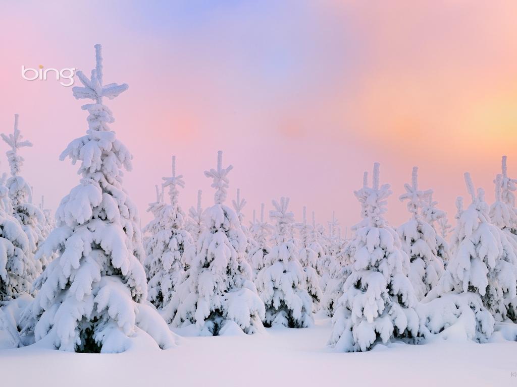 Bing Winter Nail Art And Model 1024x768