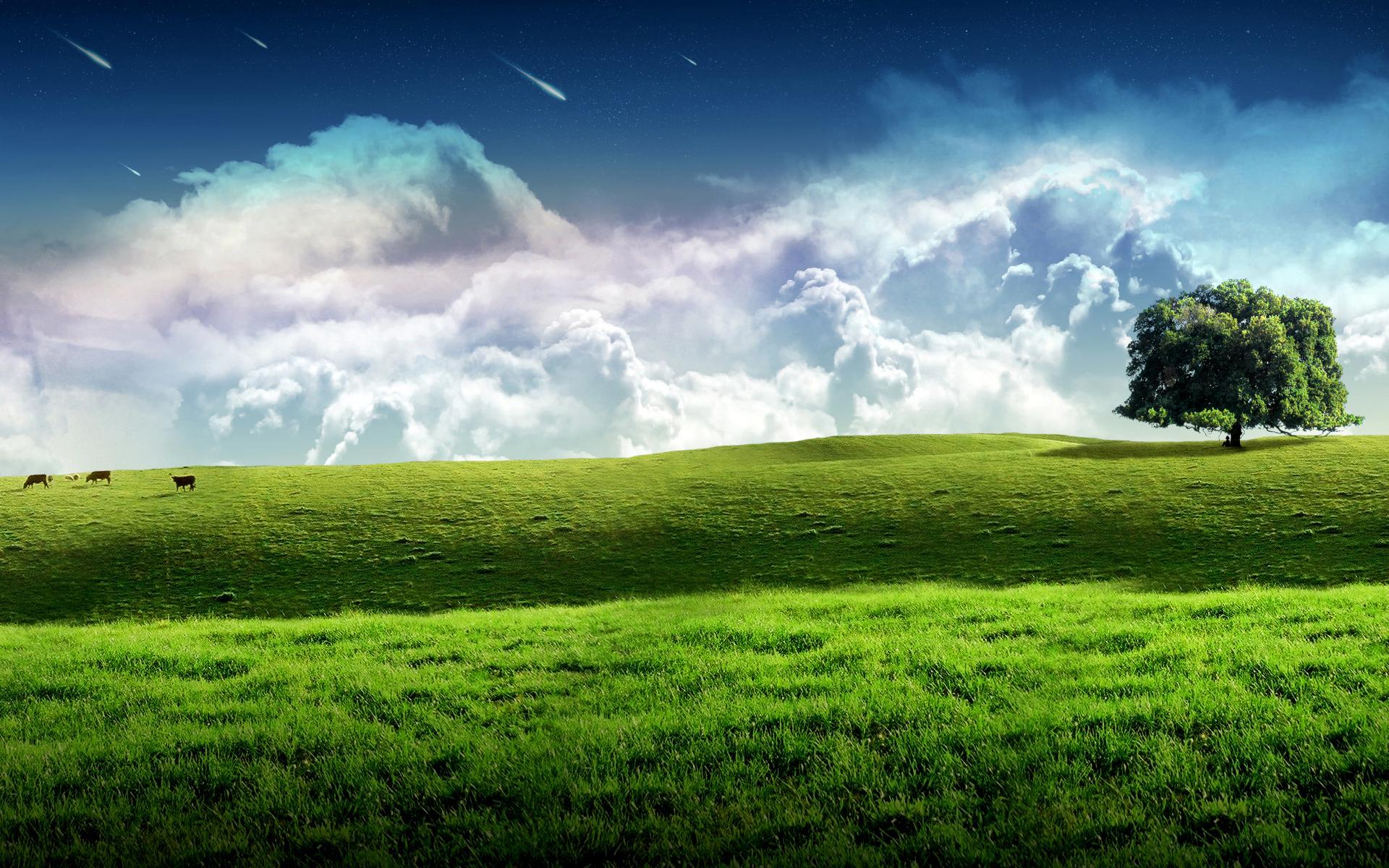 3D Nature Scene Wallpaper