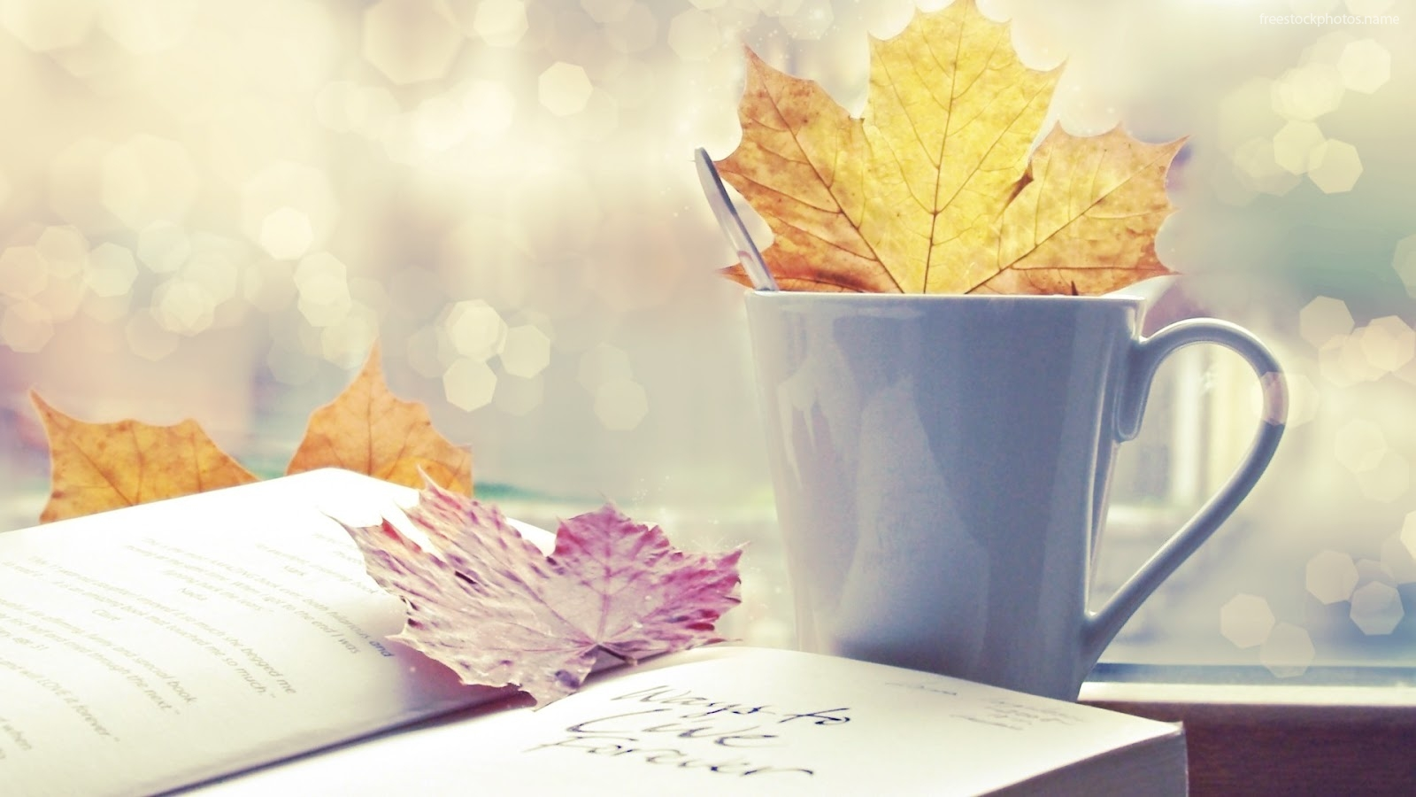 Download Stock Photos of wallpapers of open books images photography 1600x900