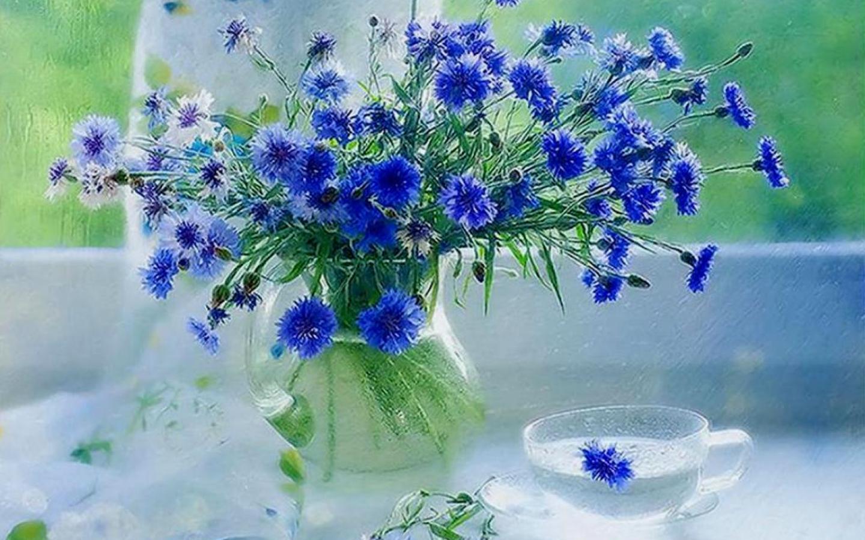Красивые открытки с полевыми цветами с добрым утром