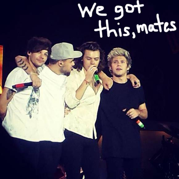 one direction 2015 MEMEs 580x580
