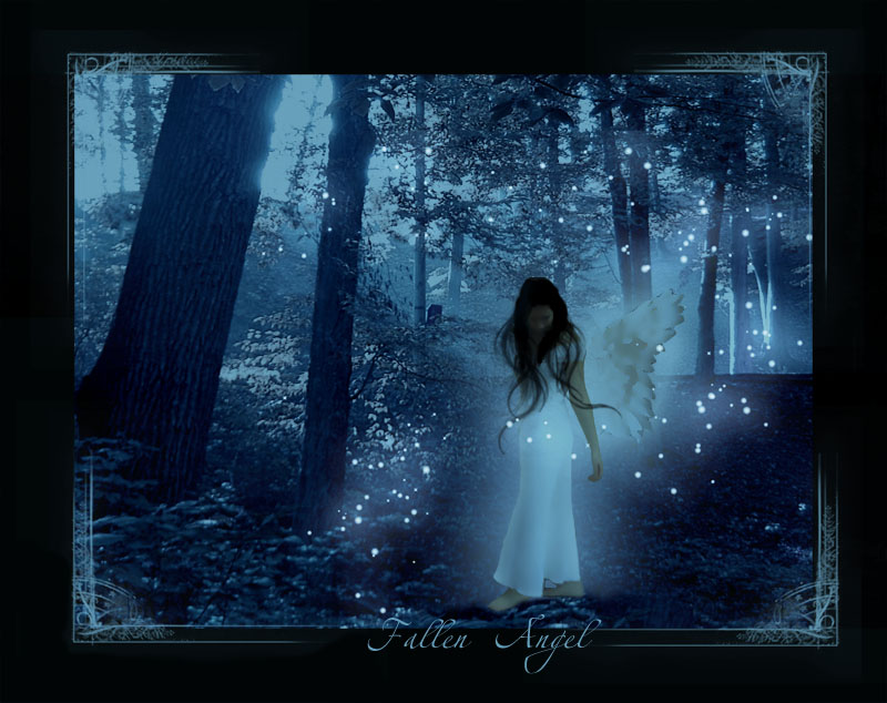 Desk top wallpaper PC wallpaper fallen angel 800x634