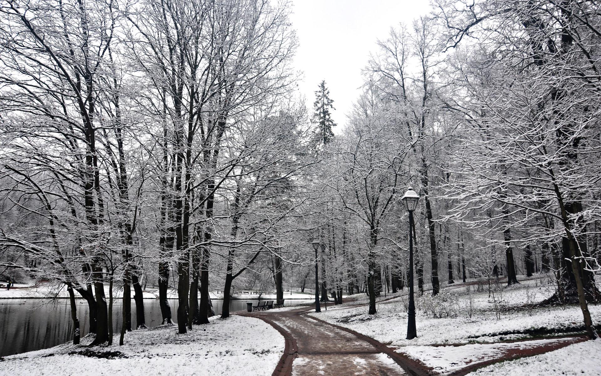 Beautiful Winter Wallpaper HD for desktop 1920x1200