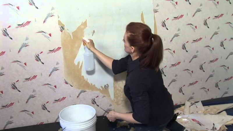 How To Remove Wallpaper Glue Residue How to Removing Wallpaper Glue 800x450