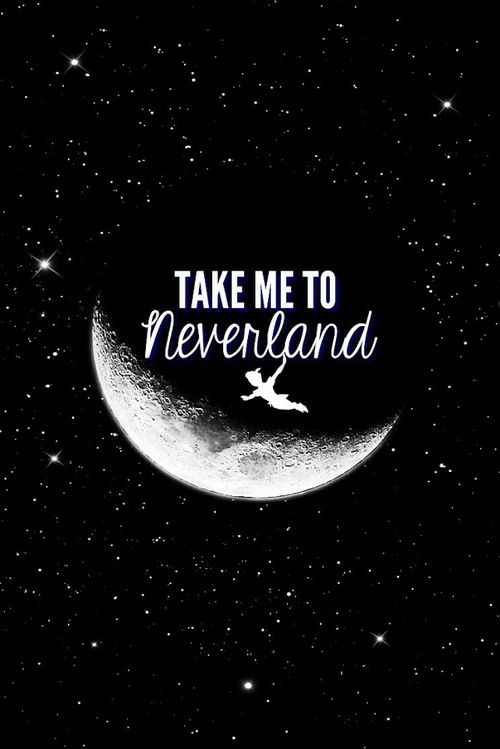 Take Me To Neverland Never Land Pinterest 500x749