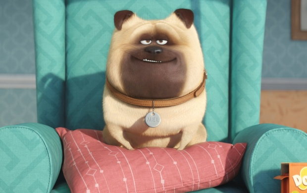 The Secret Life Of Pets Puppy click to view 620x390