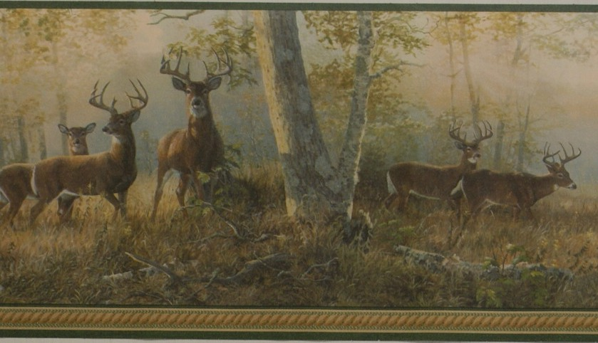 DEER NATURE WALLPAPER BORDER   14C10   221B44341 MonsterMarketplace 839x482