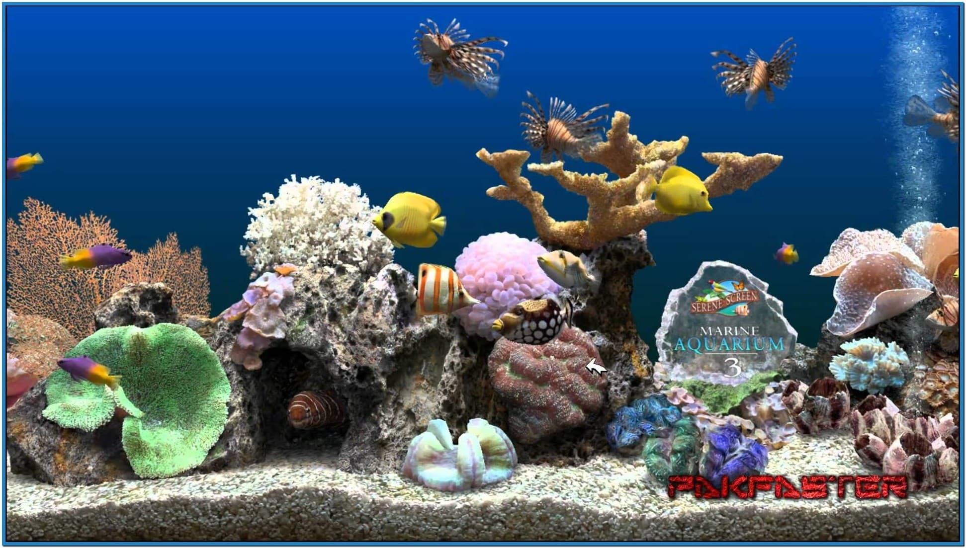 Screensaver marine aquarium deluxe 32 1943x1103