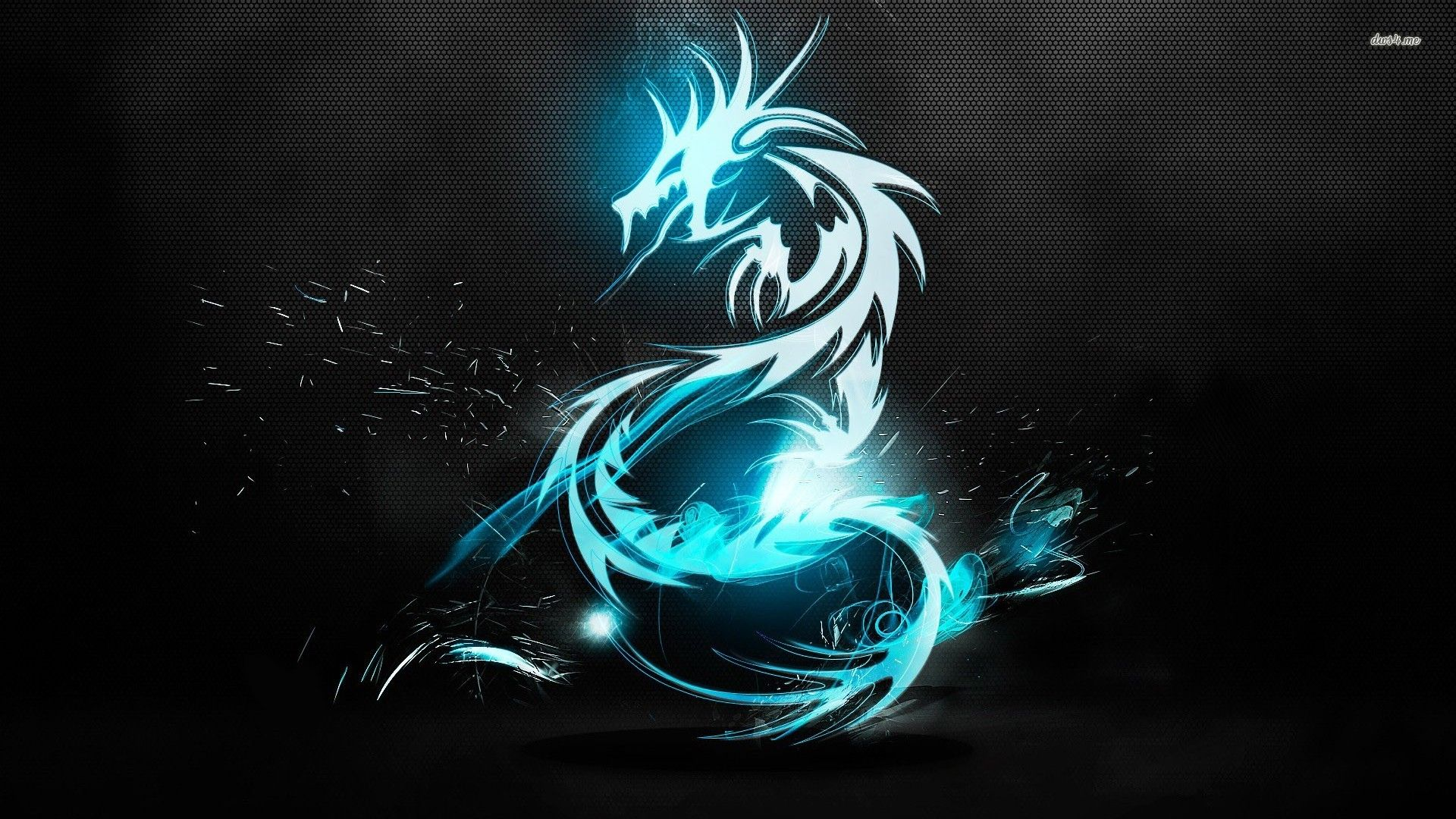 Blue Dragon Wallpapers 1920x1080
