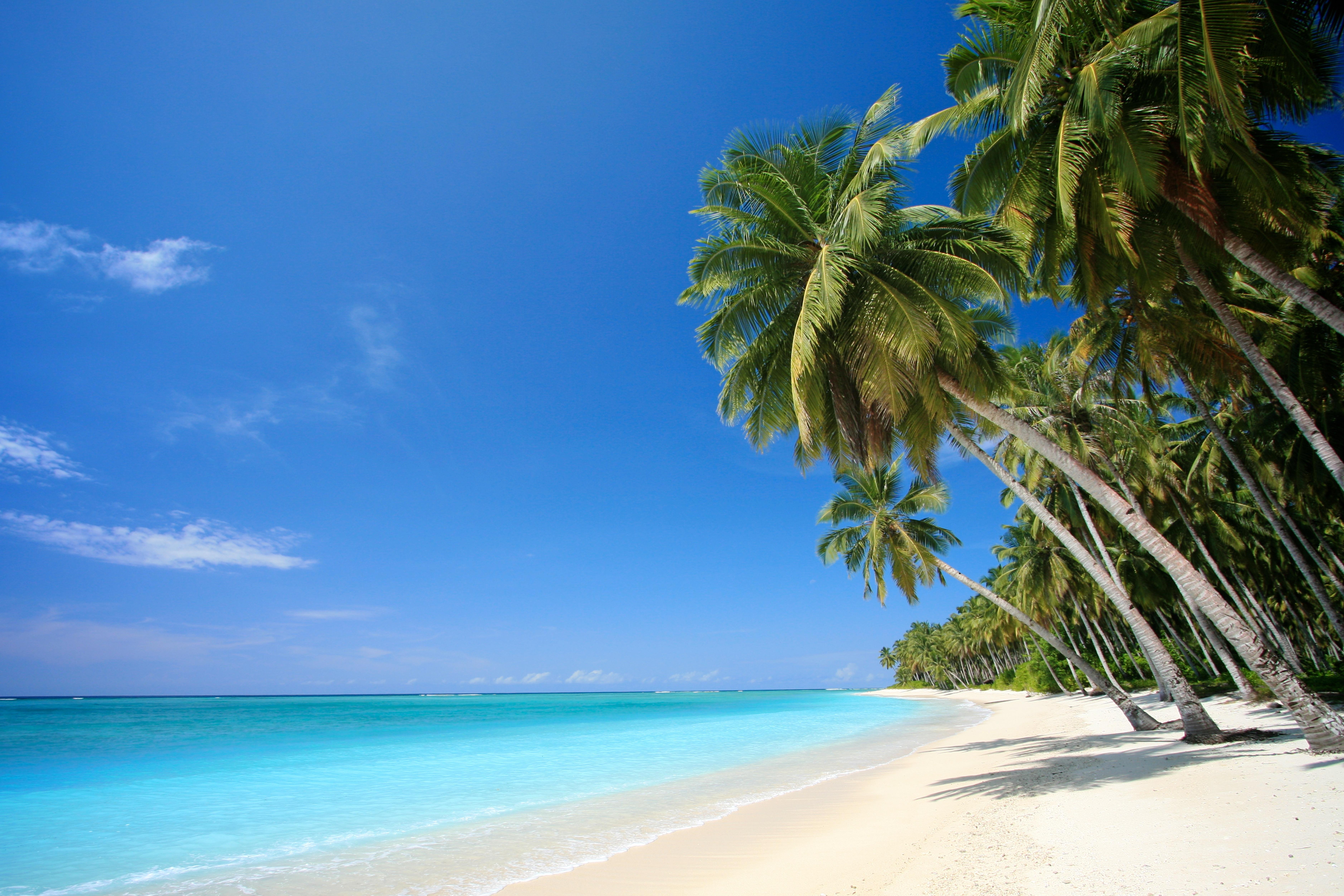 wallpaper Tropical Beach Screensaver hd wallpaper background desktop 7512x5008