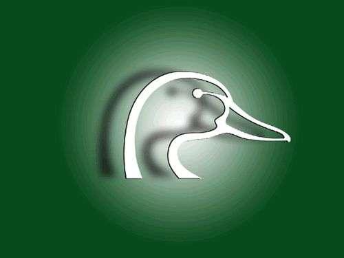 Ducks Unlimited Backgrounds   Twitter Myspace Backgrounds 500x375
