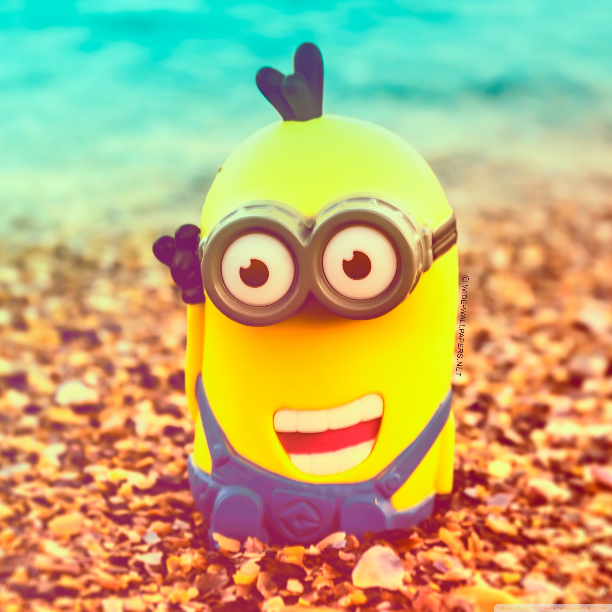Cute Minions Wallpaper For IPads The Art Mad Wallpapers 2048x2048