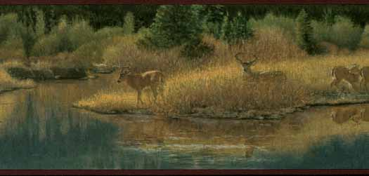 Deer Valley Wallpaper Border ADV2083B   Wallpaper Border Wallpaper 525x251