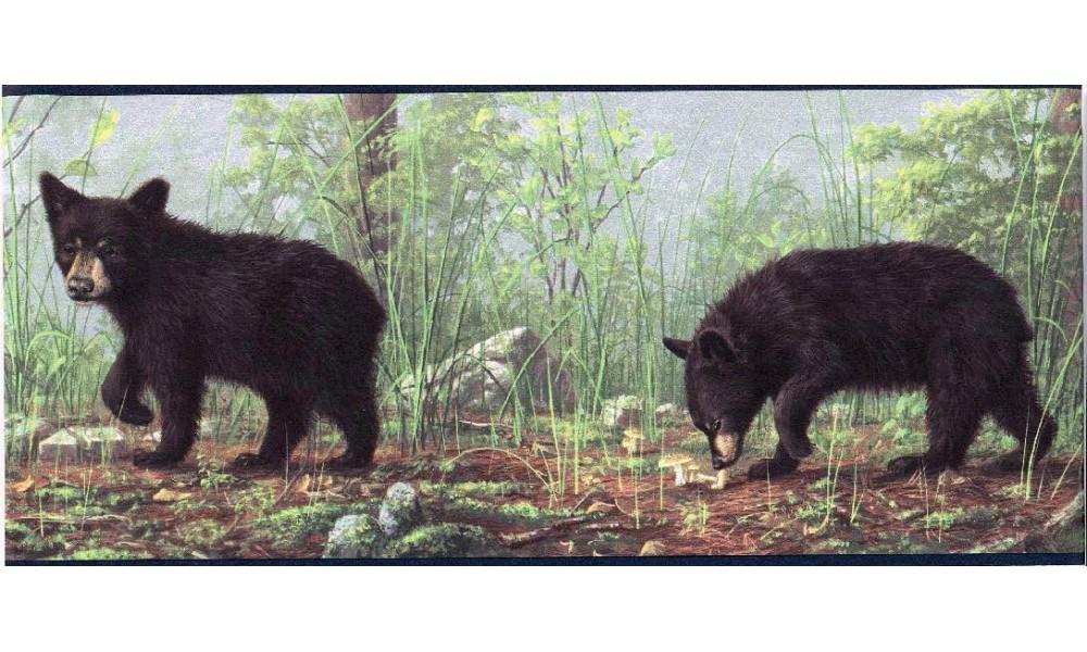 Home Bear Forest Wallpaper Border 1000x600
