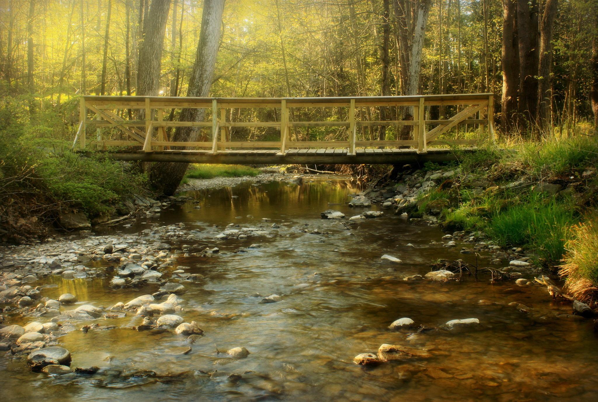 Wallpaper forest river creek bridge wallpapers nature   download 2048x1376