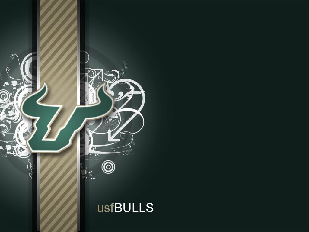 usf bulls wallpaper 1024x768