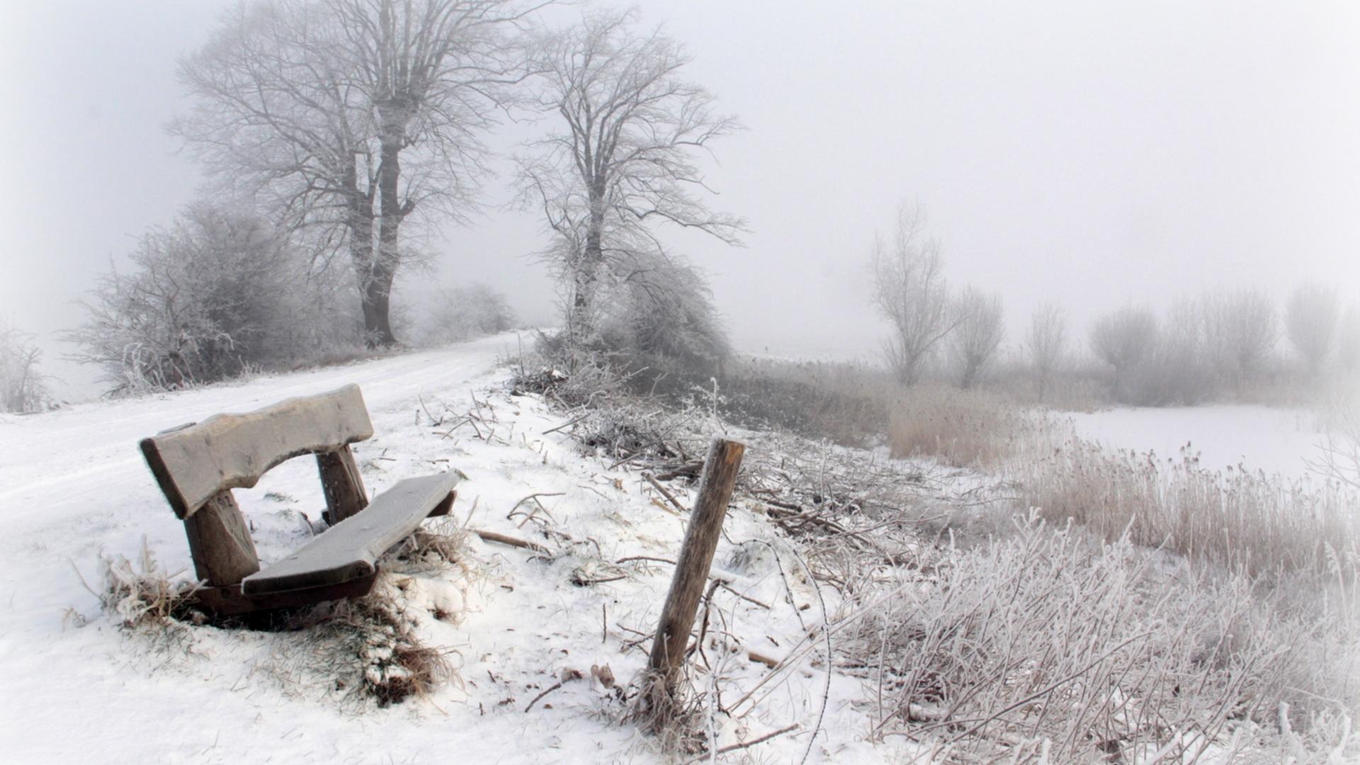 hdwallpaper2013comwinterbest winter snow nature hd wallpaperhtml 1920x1080