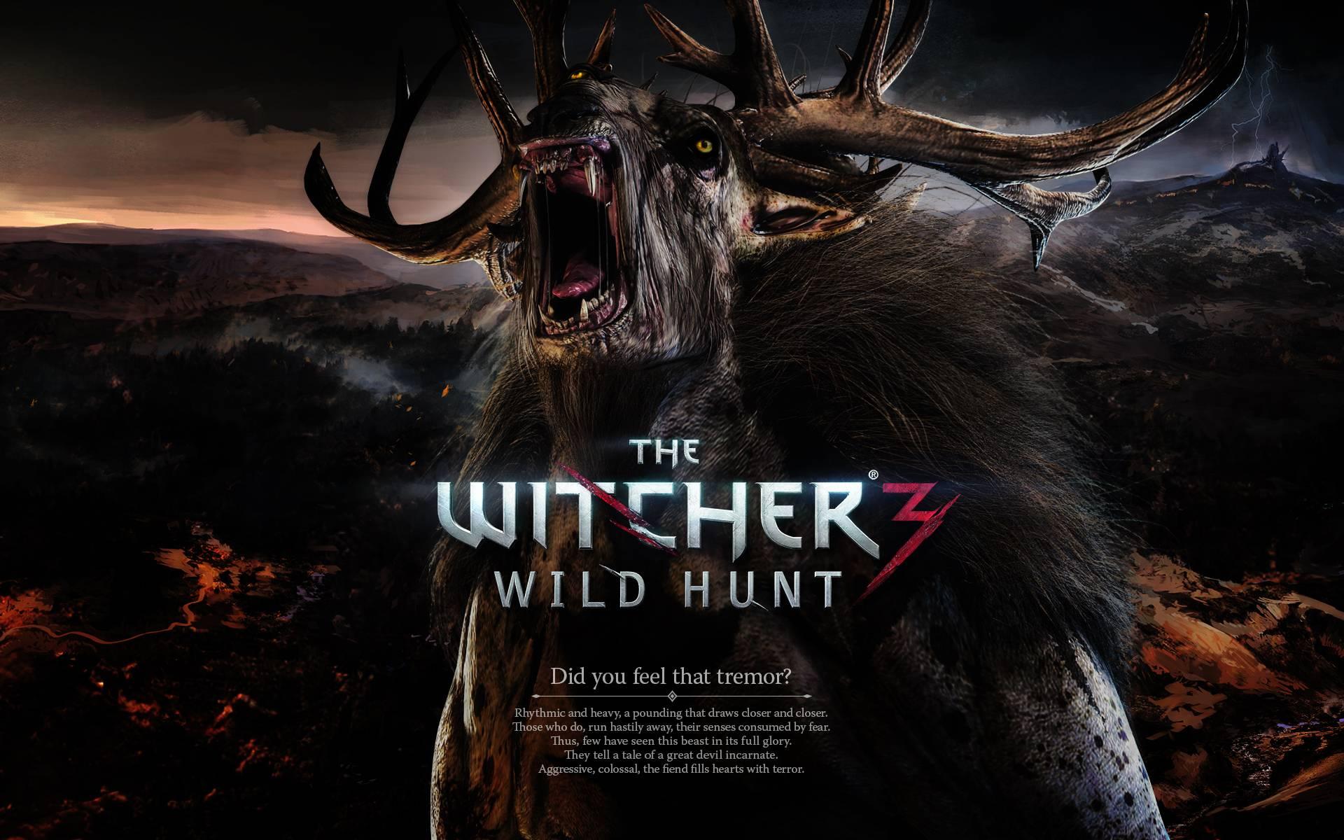 The Witcher 3 Image download in digitalimagemakerworldcom 1920x1200