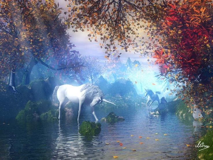 animated unicorn screensavers unicorn wallpaper 1024 x 768 736x552