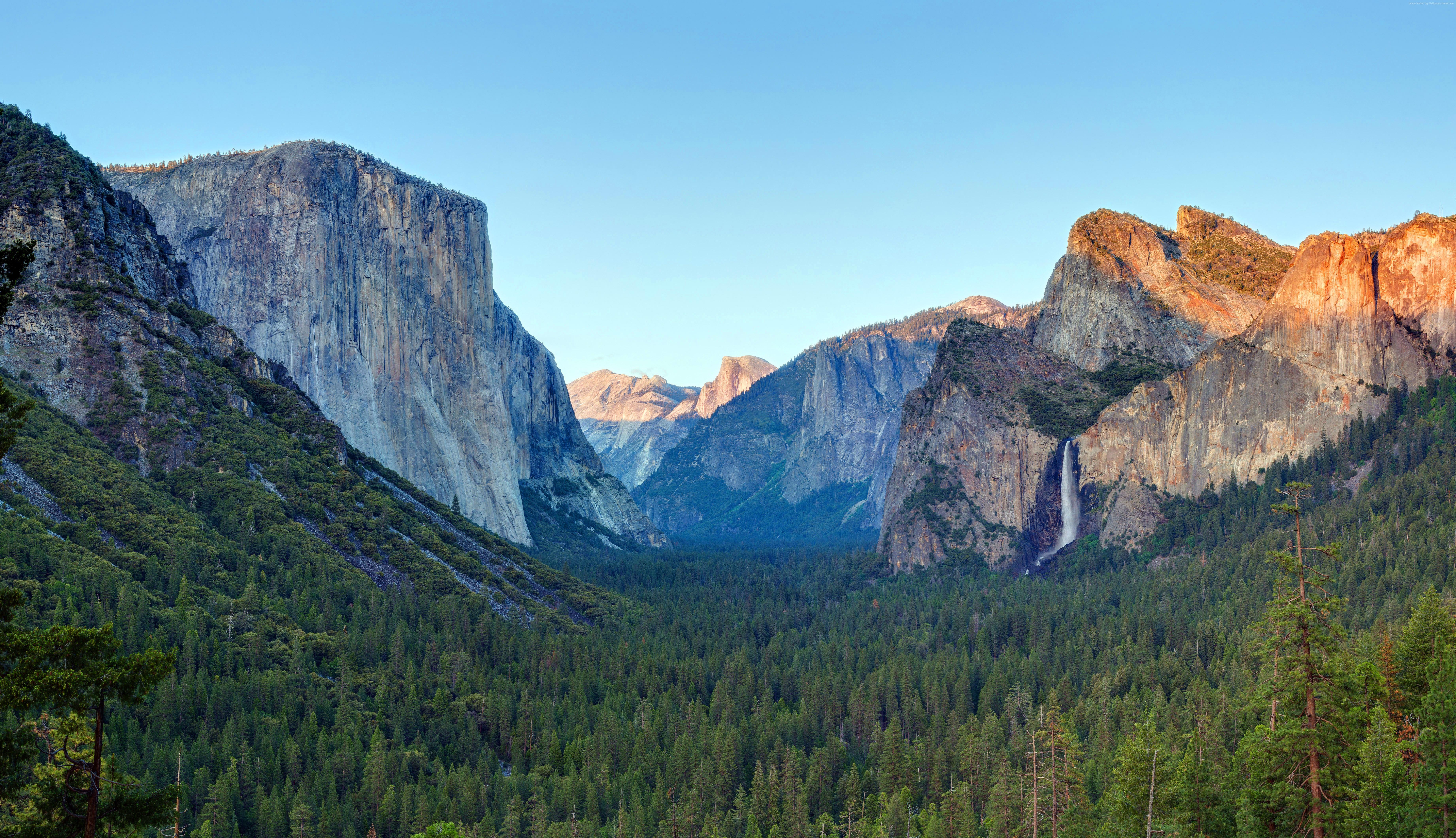 Yosemite Wallpaper Nature Forest Yosemite 5k Wallpapers 7368x4239