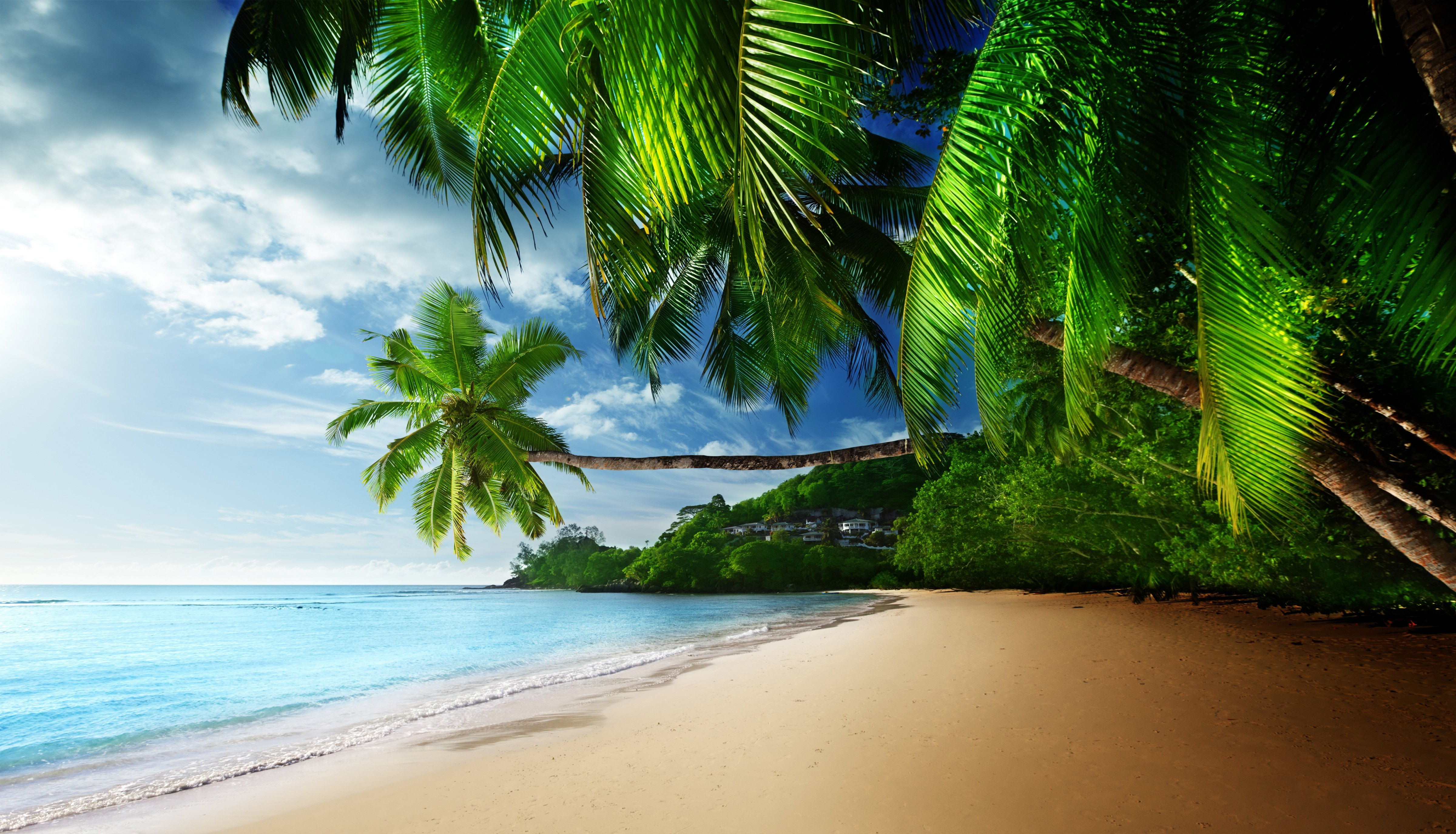 Hd Tropical Island Beach Paradise Wallpapers And Backgrounds: Paradise Beach Wallpaper