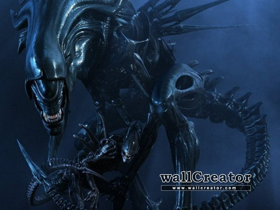 Free Download Alien Queen Wallpaper Images Pictures Becuo