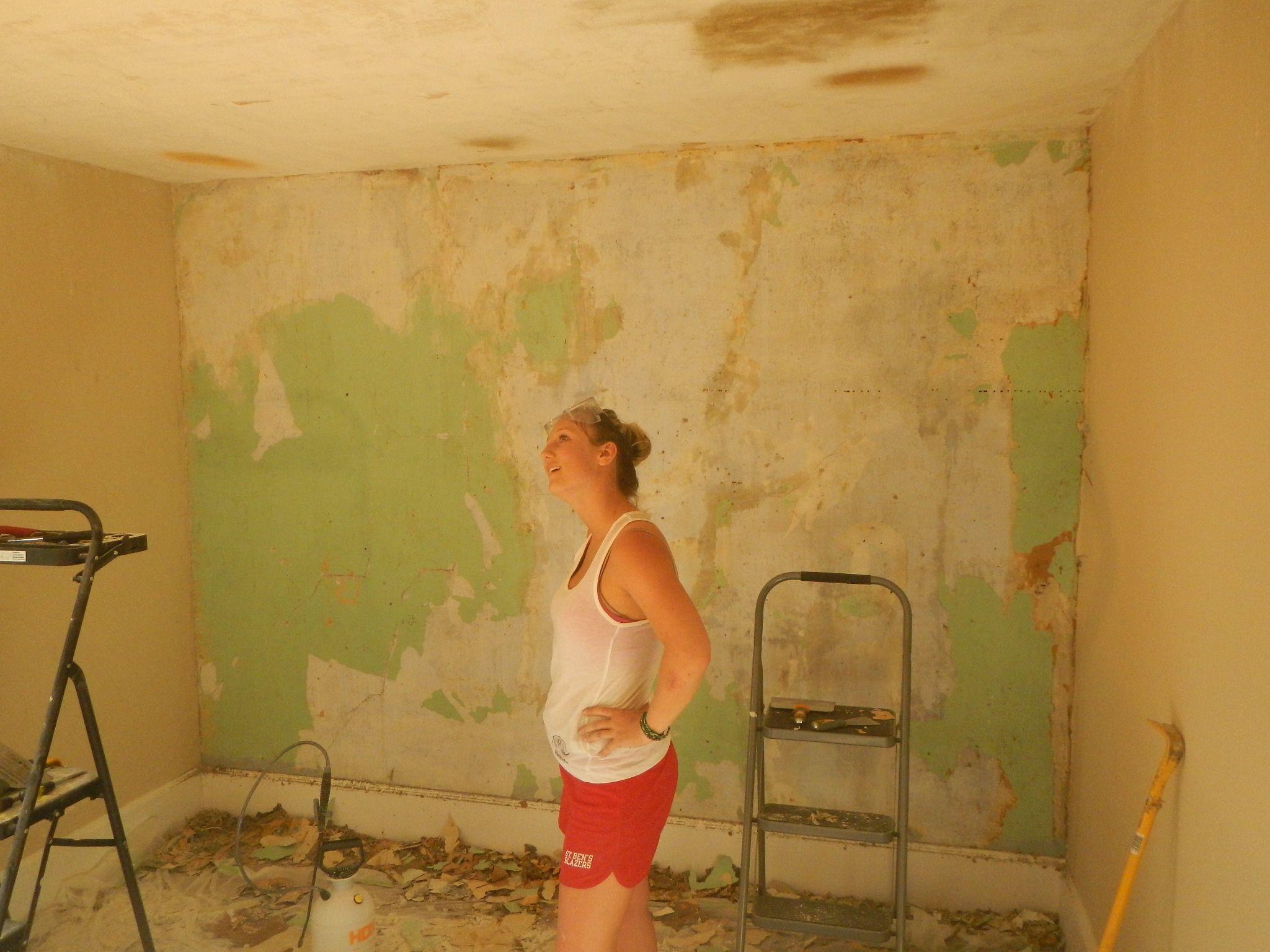28 Remove Wallpaper And Paint Walls On Wallpapersafari