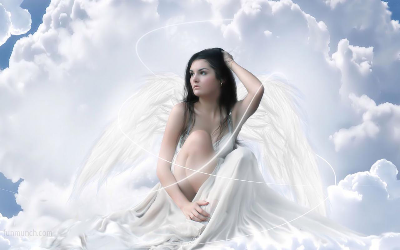 Teddybear64 images Beautiful Angel wallpaper photos 16911101 1280x800