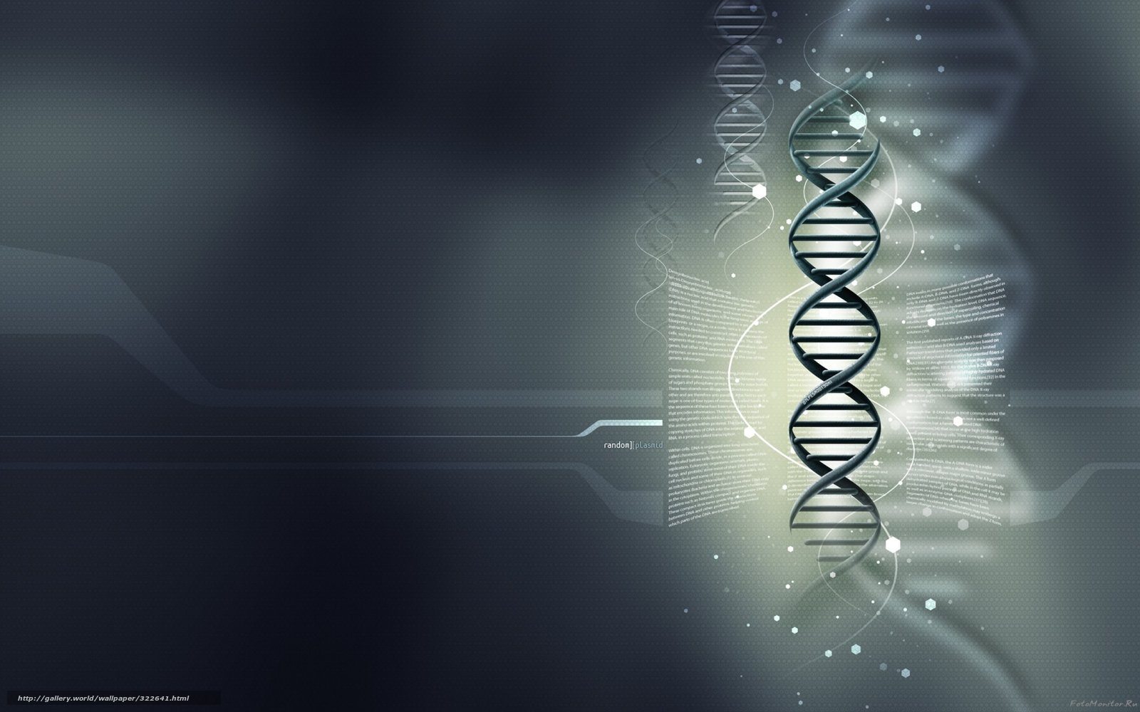 wallpaper gray background DNA medical wallpaper genes desktop 1600x1000