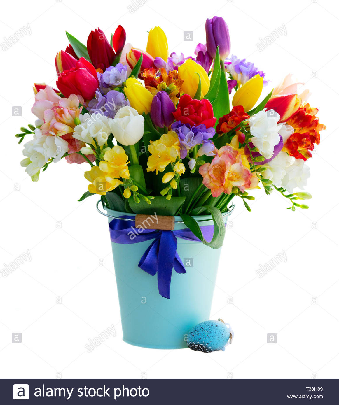 Bouquet of tulips and freesias flowers in bucket isolated on white 1162x1390