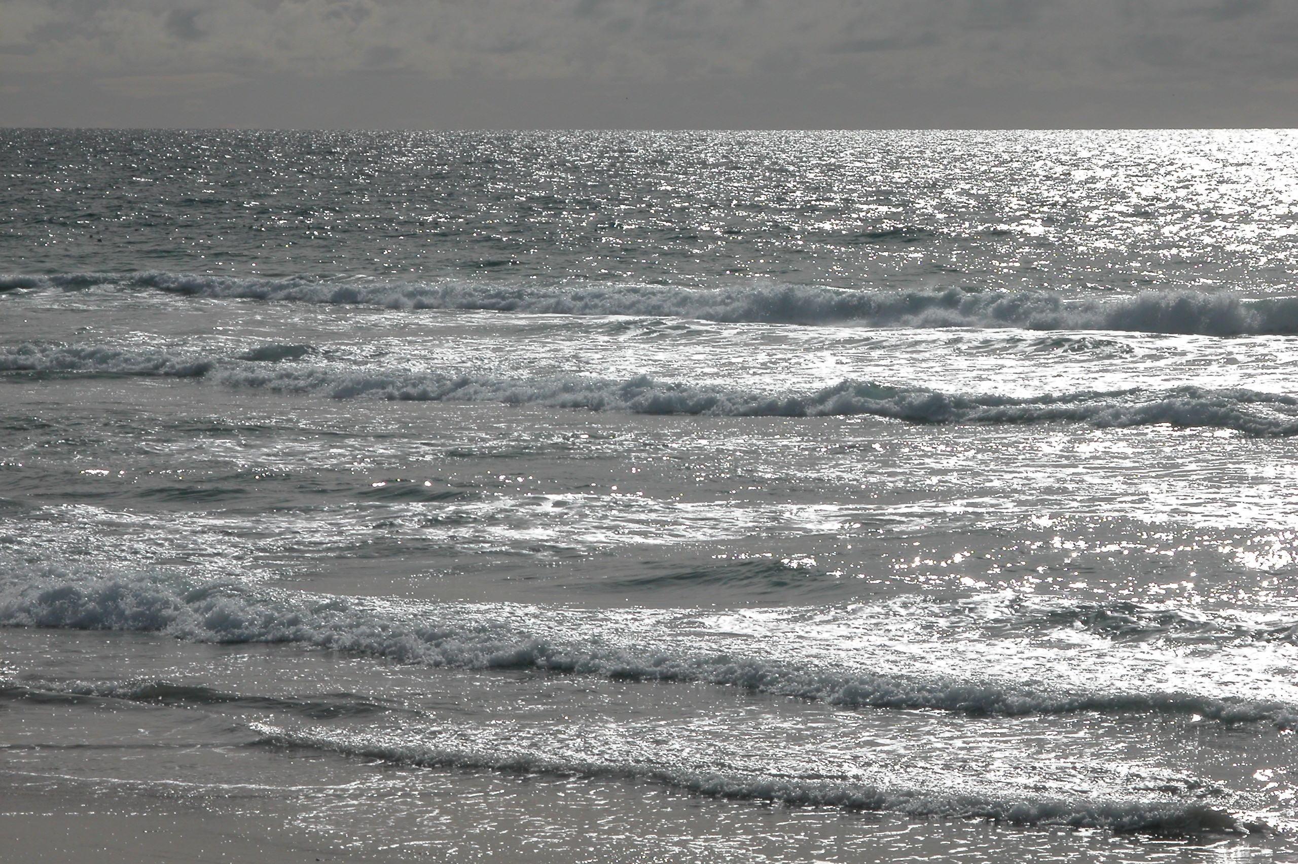 Venice Beach Wallpaper   ForWallpapercom 2560x1704