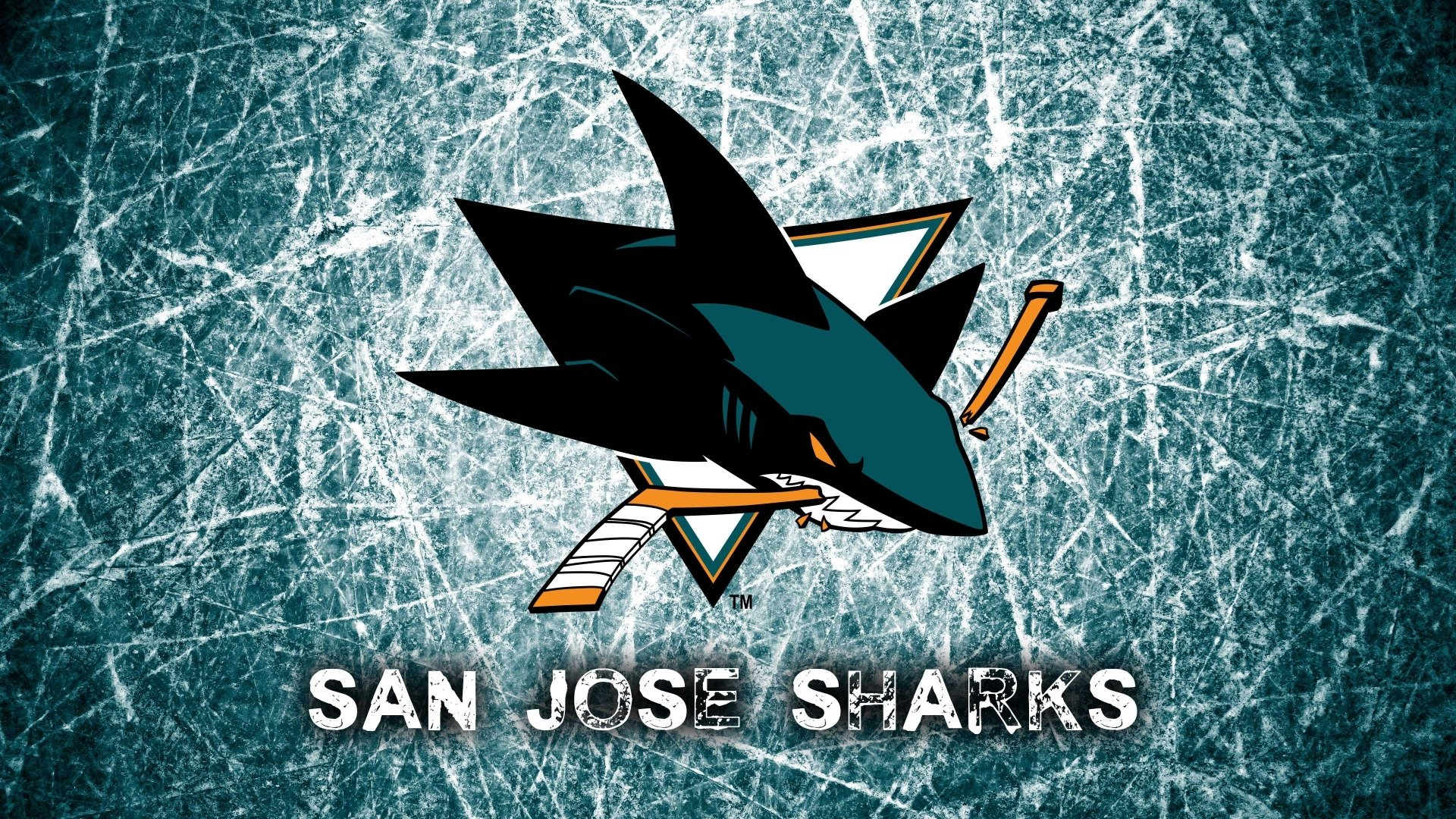 20 San Jose Sharks HD Wallpapers Background Images 1920x1080