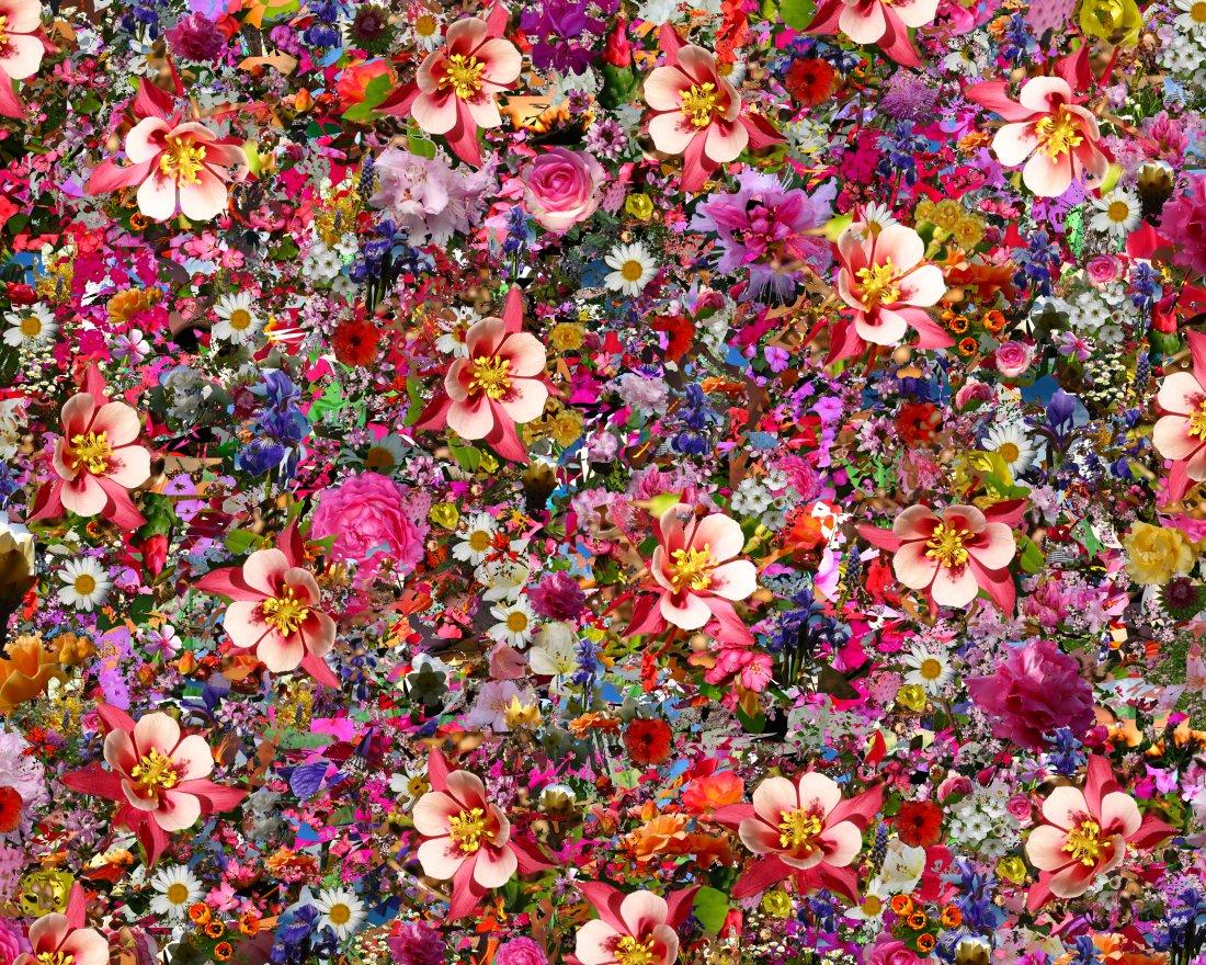make a wallpaper collage wallpapersafari