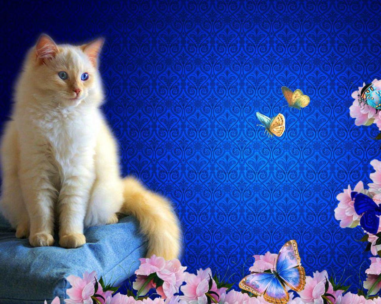 CAT WITH FLOWERS AND BUTTERFLIES WALLPAPER   140537   HD Wallpapers 1280x1024